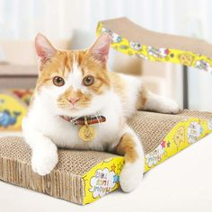 Multi-rule Cat Scratcher, A Variety of Irregular Shapes and Dizes Pet Scratcher, with Interesting Cat Patterns Cats Bus, Cat Scratcher, Types Of Lettering, Cat Paws, Cat Pattern, Shapes, Pets, Cats Claw, Animals
