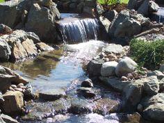 My new backyard waterfall and koi pond wish i had done for Koi ponds for dummies