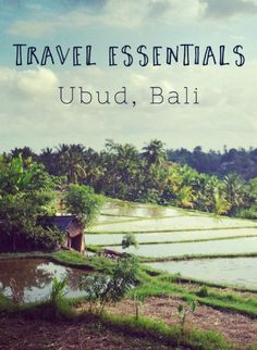 Travel Essentials. A guide to getting started in Ubud, Bali. Heaps of tips and advice.
