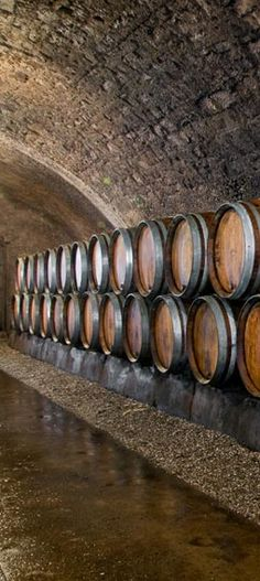 Remich Luxembourg.  In the refreshing dim light of the underground galleries, the visitor will discover the secret of the high quality of the St Martin wines and crémants.