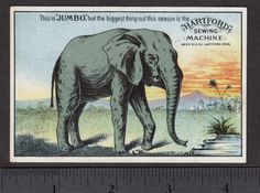 ca-1882-Jumbo-P-T-Barnum-Circus-Elephant-Hartford-Weed-Sewing-Machine-Trade-Card