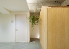 Garden-like office by Tsubasa Iwahashi with hanging baskets and a shed