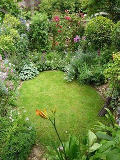 Lush green perfection! Shady privacy. The perfect small garden.
