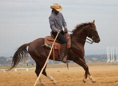 Welcome to Diamondx Cowboy Ranch!