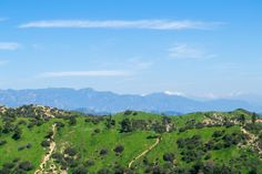 Hike in Griffith Park #spring #2017 #california #losangeles #la #usa #visit #travel #traveler #traveling #калифорния #лосанджелес #friendlylocalguides #hike #panoramic #view #scenic #apline #griffith #park
