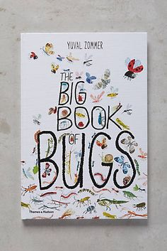 The Big Book Of Bugs- great book for exploring the world and teaching kids about science and bugs!