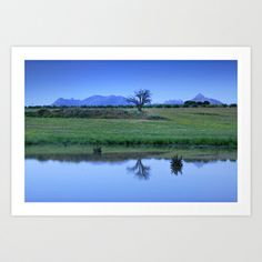 Blue hour. Lonely tree Art Print by Guido Montañés - $20.00