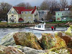 Fishermen of North Sydney, Cape Breton, Nova Scotia Canada Cruise, Canada Travel, Travel Usa, Cap Breton, New England Cruises, Tasmania Hobart, Atlantic Canada, O Canada, Prince Edward Island