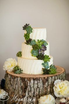Simple white cake made beautiful by tree stump cake stand and gorgeous…