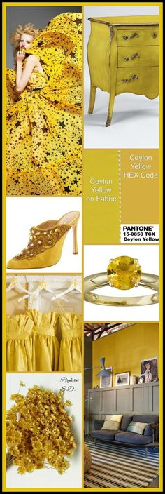 & # & # Ceylon Yellow: Pantone Herbst / Winter Farbtrends & # von Reyhan S. Color Trends 2018, 2018 Color, Yellow Pantone, Pantone Color, Fall Fashion Trends, Fashion Edgy, Color Stories, Fashion Colours, Color Of The Year