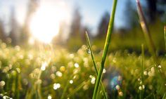 Les bonnes habitudes du matin !  CANG Amandine, Chiropracteur - Bio - Google+