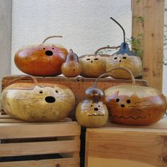 Cat gourd Natural Kitty Hand Carved Decoration by pinchmeboutique, $21.00