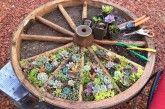 Wagon Wheel Garden Is Such An Easy DIY