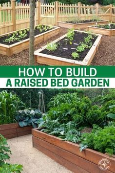 How To Build A Raised Bed Garden —I have never had success in the garden like that that in the raised bed. Having full control of the soil and the moisture in your garden is crucial and the raised bed just cannot be rivaled. In my own personal experience I saw a yield well over 100% when I stopped growing in the garden soil and began building raised beds. #garden #gardening #gardeningtips #homestead #homesteading #raisedgardenbed #gardenbed