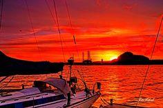 Beautiful sunset  in my village this evening agree? #FotoFiskvik #Kristiansand #Norway #fvn #nrksorlandet #godmorgennorge #kristiansandavis #nordiskenaturfotografer #norsketurbilder #nature_perfection #utpåtur #visitnorway #nature #sailboat #topdalsfjorden #sunset #red #sea#haven #love #instagood #me #like4like #tagsforlikes #pictureoftheday #photooftheday #photo # by fotofiskvik