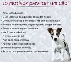 PURA VERDADE ❤️❤️❤️ #cachorroétudodebom  #amocachorro  #amoanimais  #gato  #cachorro  #petmeupet Love Pet, I Love Cats, Animals And Pets, Cute Animals, Pet Home, Animal Quotes, Dog Memes, Dog Friends, Dog Life