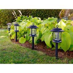 Hampton Bay Plastic Solar Led Black Path Light 10 Pack Pinterest