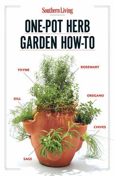 The Easiest Way to Grow Herbs Step 1: Start with a terra-cotta pot with holes (aka strawberry pot). We prefer a 3-gallon one. Fill bottom th...