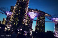 Välilasku Singaporessa