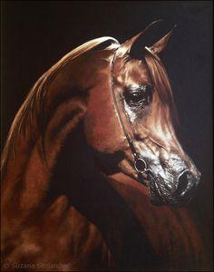 Art Gallery by Suzana Stojanović: ~ The Magical World of Horses ~