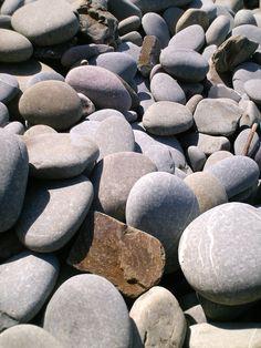 grey mexican pebbles
