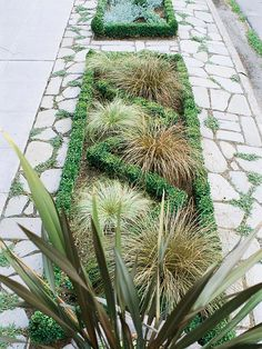 This relatively simple sidewalk garden makes a big statement in a small space: http://www.bhg.com/gardening/landscaping-projects/landscape-basics/sidewalk-garden-front-yard/?socsrc=bhgpin032014makeastatement&page=9