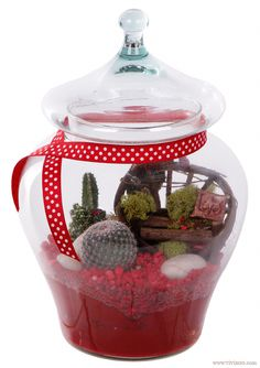 A terrarium garden gift made for Valentine's Day! The color red symbolizes love and courage, and cacti have meanings of longevity and endurance. Don't you just <3 the little fairy bench?