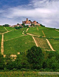 Castiglione Falletto - Piemonte - Italia