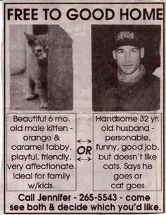 Je prends le chat, amour inconditionnelle...