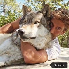Wolf Hybrid Dogs, Man And Dog, Cute Dogs And Puppies, Spirit Animal, School Bags, Animals Beautiful, Cute Pictures, Handsome, Wolves