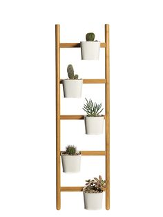 Living Wall | Delightful and practical gifts for her everyday use, from accessories to wall decor