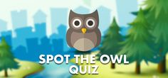 QuizDiva – Spot the Owl Quiz Answers Owl Who, Roblox Animation, Owls, Diva, Owl, Godly Woman