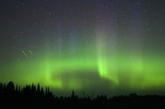I wasn't alone when the northern lights peaked about 1:20-2 a.m. At upper left you'll see the trails of a couple of fireflies. Credit: Bob King