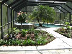 1000 Images About Tampa Landscape Design Tropical Oasis