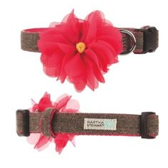 Brighten up crisp fall days with this #MarthaStewartPets fashionable tweed collar, topped off with a colorful floral embellishment. Only at #PetSmart