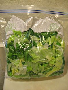 Great money-saving tip for long term storage of fresh lettuce
