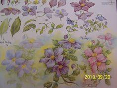 "China Painting Study 44 ""Clematis"" Gladys Galloway   eBay"