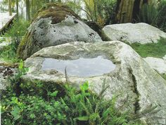 natural rock water bowls