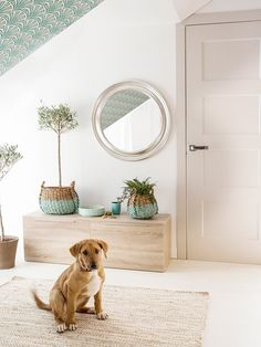 Home Decorating Magazines Usa Entrada Ikea, Painted Baskets, Entry Hallway, Pet Boutique, Shop Interiors, Dream Decor, Fashion Room, Home Staging, Decoration