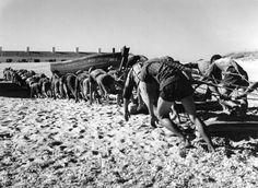 """Algarve, Santa Luzia. Praia da Armação do Barril. Décadas de 50/60. """"Avarando"""" o """"giro"""" do mar."""