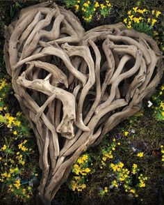 Beautiful heart made of branches || Love Moments
