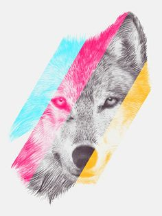 Wild 2 by Eric Fan & Garima Dhawan Art Print/Society6