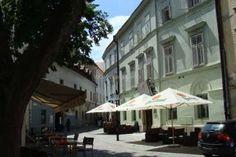 Once in a lifetime hostel experience in Bratislava, capital of Slovakia Bratislava, Wild Elephant, Work Travel, Hostel, Lodges, Trip Advisor, How To Memorize Things, Street View, 81