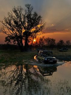 Moremi Game Reserve, Botswana √ ☮ re-pinned by http://www.wfpcc.com