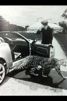lampard, car, like a lord