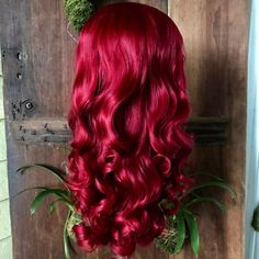 Red Wigs Lace Frontal Wigs Red Curly Hair Wig Hot Pink Ombre Wig Red P – shaddocktal Red Pink Hair, Pink Hair Dye, Bright Red Hair, Neon Hair, Bright Hair Colors, Red Hair Color, Violet Hair, Dye Hair, Colourful Hair