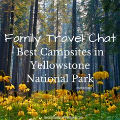 Top Family Travel Destinations - Best Campsites in Yellowstone National Park