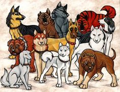 GNG Dogs Commission by WildSpiritWolf on DeviantArt Animal Sketches, Animal Drawings, Dog Drawings, Pencil Drawings, Wolf People, Japanese Dogs, Anime Wolf, Anime Animals, Sketch Inspiration