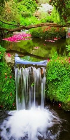""".Whoever believes in me, as the Scripture has said, """"Out of his heart will flow rivers of living water.""""  John 7:38 ESV"""