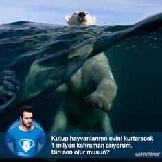 Kuzey Kutbu'nu petrol şirketlerinin elinden kurtarmak isteyen 1 milyon kahramana katıl>> http://www.1milyonkahraman.org/